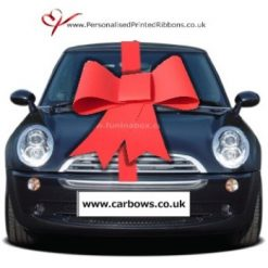 Big Card Budget Bow With Ribbon To Wrap The Car