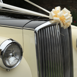 Buy Wedding Car Bows & Ribbons Essex All Colours